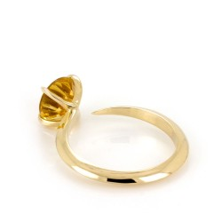 Talon Small Cocktail Ring